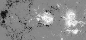 A magnetic map of emerging sunspot 10926 recorded by Hinode in Dec. 2006.